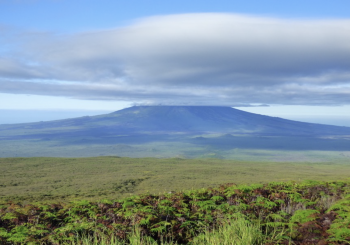 Étude des fissures éruptives et des coulées de lave aux Galapagos
